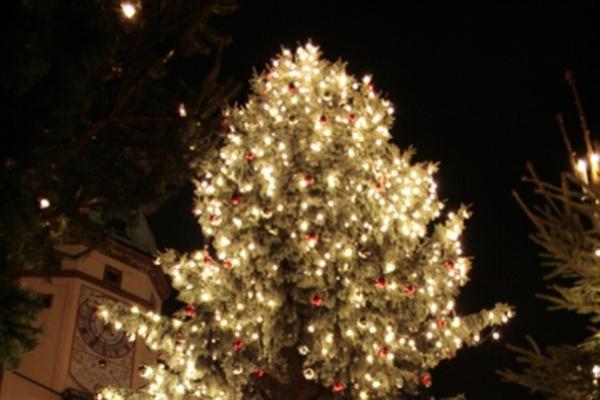 best 28 weihnachtsbaum entsorgen leipzig vogtl 228 nder fichte leipziger weihnachtsbaum auf. Black Bedroom Furniture Sets. Home Design Ideas